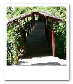 ロッジは川の向こう。ボロボロの橋がかかってます