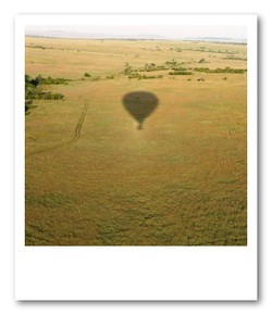 草原に映るバルーンの影
