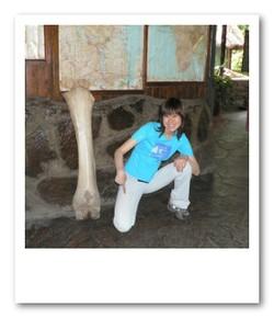 ゾウの足の骨、ビッグサイズ!