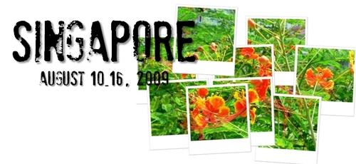 シンガポール旅行記-2009-